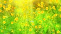 Groene En Gele Lente Bloemen