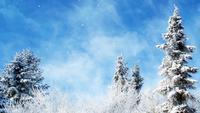 Fondo de invierno de fantasía soñadora
