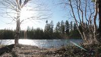 Journée d'hiver ensoleillée à la rivière