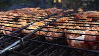 Delicious Chicken Barbecue on Coal Fire