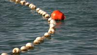 Boei en visnet op zeewater