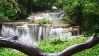 Cachoeira bonita na floresta