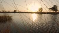Door het gras gaan om de zonsondergang in de rivier te zien