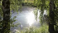 Bomen en zonlicht reflecties op een rivier