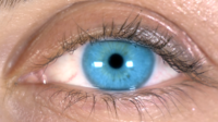 Close-Up Of A Blue Eye