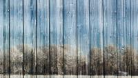 Wooden Winter Planks Loops