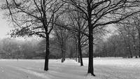 Boucle de fond d'hiver doux