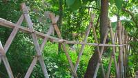 A handcrafted bamboo fence  at the forest