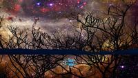 Voiture roulant sur le miroir d'eau et la réflexion de la galaxie de la nébuleuse