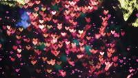 Little hearts falling and blur shaped heart lights