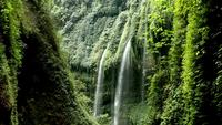 Zooma in Rainforest Waterfall, Indonesien.