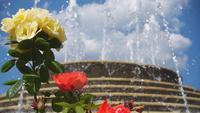 Roses and the Fountain