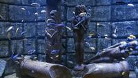 Underwater Aquarium and Statues