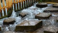 Stenar steg i vattnet