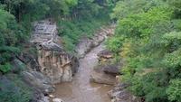 Corriente de agua que fluye a través de colinas en un bosque de verano