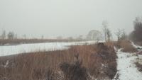 Ein kalter Tag in einer Winterlandschaft, Niederlande.