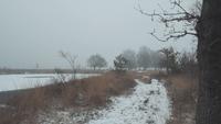 Eine Winterumgebung, die die ultimative Stille schafft