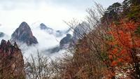 Paysage de montagne de Huangshan, Chine.