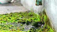 Afvalwaterstroom uit de beschadigde pijp