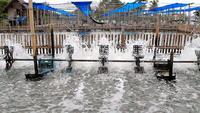 Montage de turbines à eau
