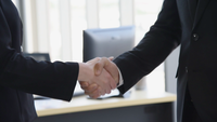 Professional businesspeople shaking hands