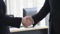 Professionelle Geschäftsleute, die sich die Hände schütteln