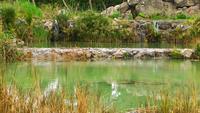 Cachoeira e a água do lago
