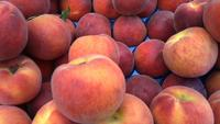 Färska naturliga persikor