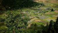 Lindos campos agrícolas, terraços de arroz em casca, Sapa, Vietnã