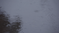 Regen fällt auf Wasser
