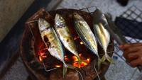 Quatre poissons sur un gril