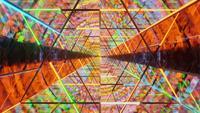 Loop de túnel de vidro de estrutura de arame de néon