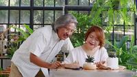 Pareja de ancianos asiáticos relajantes y plantando cactus