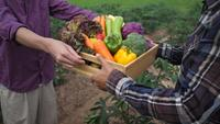 Farmers gives vegetables crate to customers with pleasure.