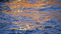 Blue And Orange Colored Abstract Sea Waves