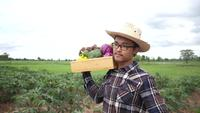 Asian Farmer Carries an Organic Vegetable Crate