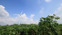 Prado verde y turbinas de viento sobre un fondo de cielo azul