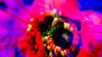 Abstrakte Blumenkunst Nahaufnahme