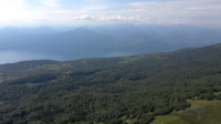 Vliegen over het bos en de heuvels