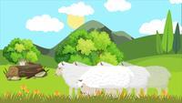 Moutons mangeant dans la plaine