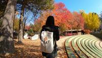 Aziatische vrouw reizen op Nami Island, Zuid-Korea