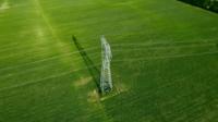 Hochspannungsmast in einer grünen Wiese