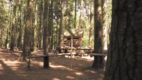 Ein leeres Spielhaus in einem Wald