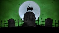 En katt på kyrkogården