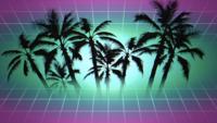 Ingelijst palmbomen