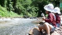 Deux filles s'amusant à nourrir les poissons au bord de la rivière