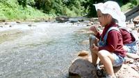 Kleine meisjes hebben plezier met het voeren van de vissen bij de rivier