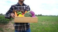 Los agricultores llevan las verduras cosechadas a los clientes.