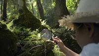 El biólogo usa una lupa para ver los detalles de las plantas