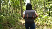 Bela jovem asiática caminhando por uma floresta tropical com uma mochila